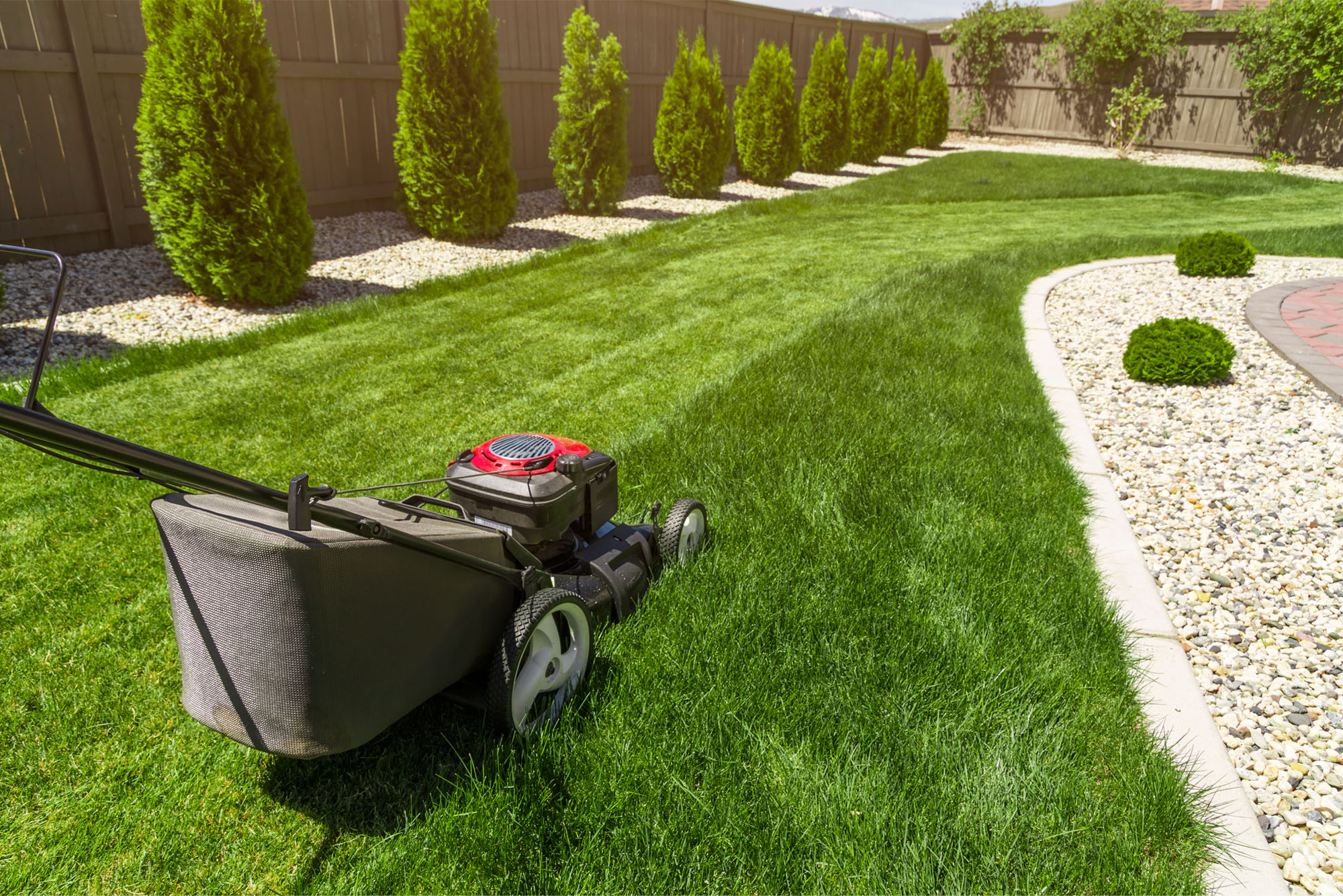 lawn care tips from the pros